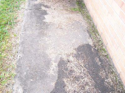 pathway-1-800
